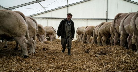 Burnout threatens a farmer on three in Saône-et-Loire