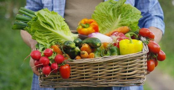 Organic Fruits and vegetables : the large distribution makes it really surmarges ?