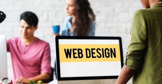 Choose A Web Designer Carefully To Get Support After A Google Update