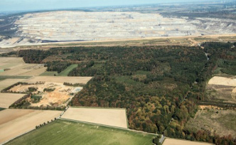 Coal phase-out and hambach forest: The forest is an island of existence threatens